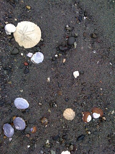 Beach-end