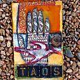 Taos-book