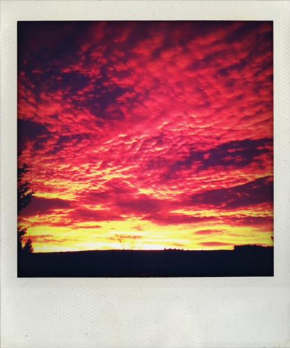 Sunrise polaroid