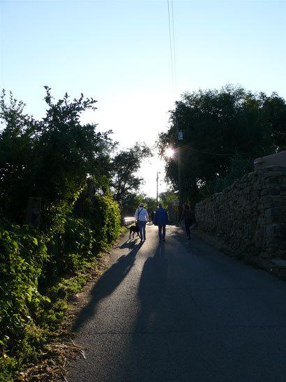 Shadowalley